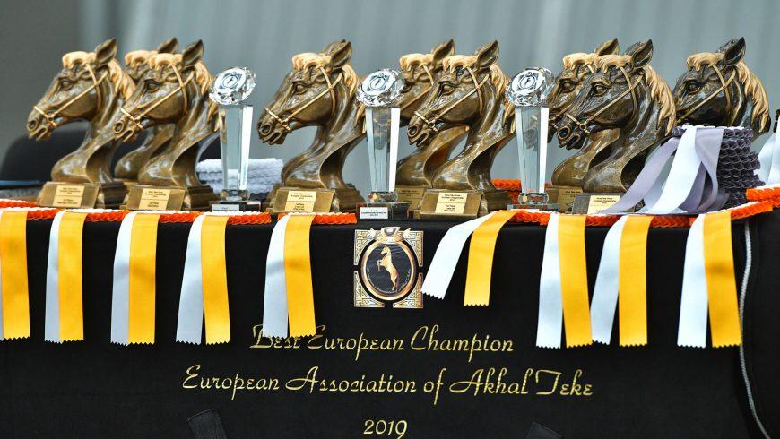 Akhal-Teke Pferde – Europameisterschaft 2019